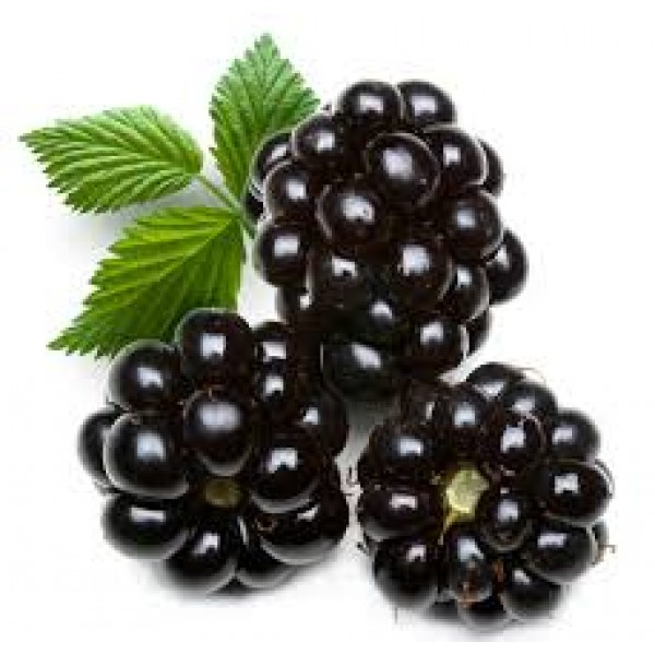 BlackBerries EA